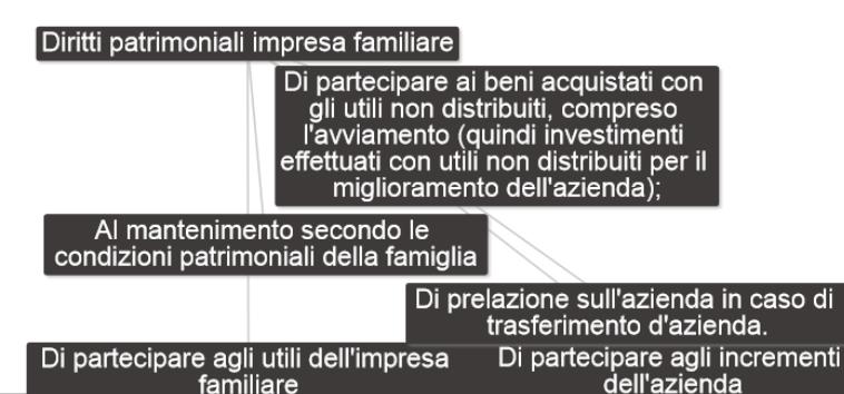 Diritti patrimoniali impresa familiare diritto commerciale