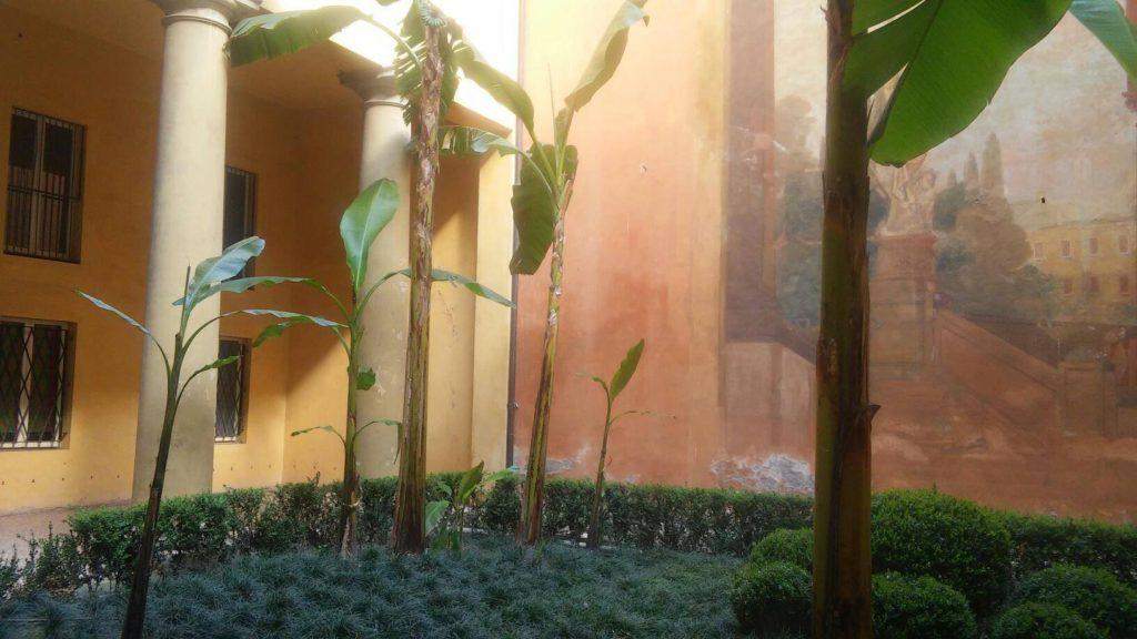 Banani Musa Basjoo in un giardino